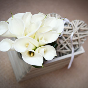 Wedding Photography in Peover